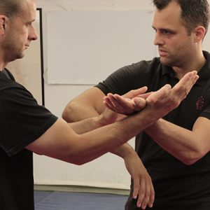 South London Wing Chun Classes